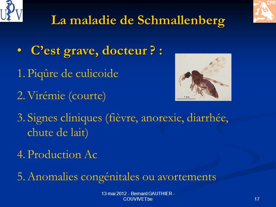 17 13 mai 2012 - Bernard GAUTHIER - COUVIVET.be La maladie de Schmallenberg Cest grave, docteur ? : Cest grave, docteur ? : 1.Piqûre de culicoide 2.Vi