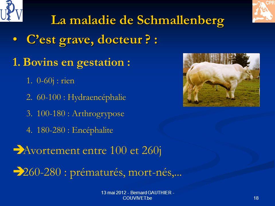 18 13 mai 2012 - Bernard GAUTHIER - COUVIVET.be La maladie de Schmallenberg Cest grave, docteur ? : Cest grave, docteur ? : 1.Bovins en gestation : 1.