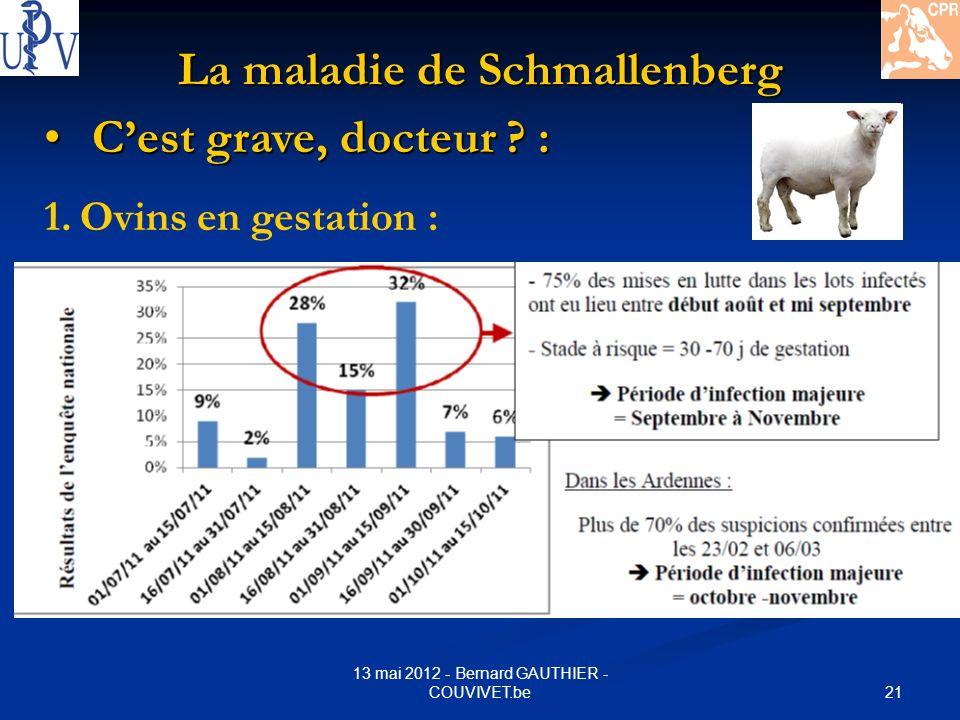 21 13 mai 2012 - Bernard GAUTHIER - COUVIVET.be La maladie de Schmallenberg Cest grave, docteur ? : Cest grave, docteur ? : 1.Ovins en gestation :