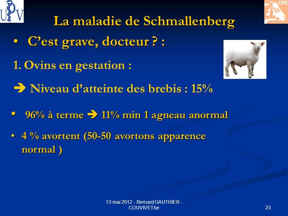23 13 mai 2012 - Bernard GAUTHIER - COUVIVET.be La maladie de Schmallenberg Cest grave, docteur ? : Cest grave, docteur ? : 1.Ovins en gestation : Niv