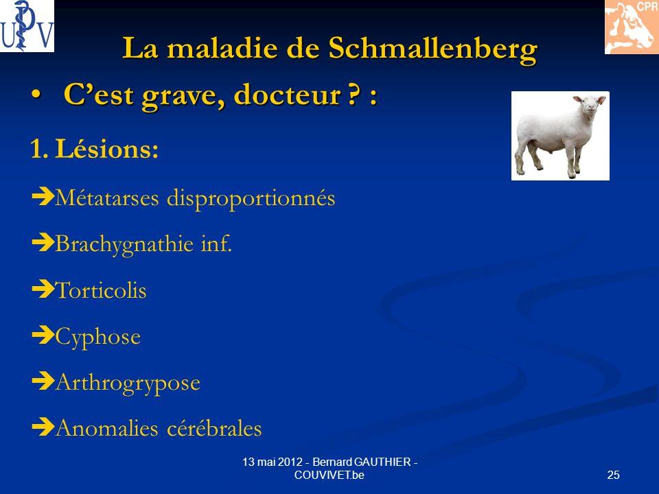 25 13 mai 2012 - Bernard GAUTHIER - COUVIVET.be La maladie de Schmallenberg Cest grave, docteur ? : Cest grave, docteur ? : 1.Lésions: Métatarses disp