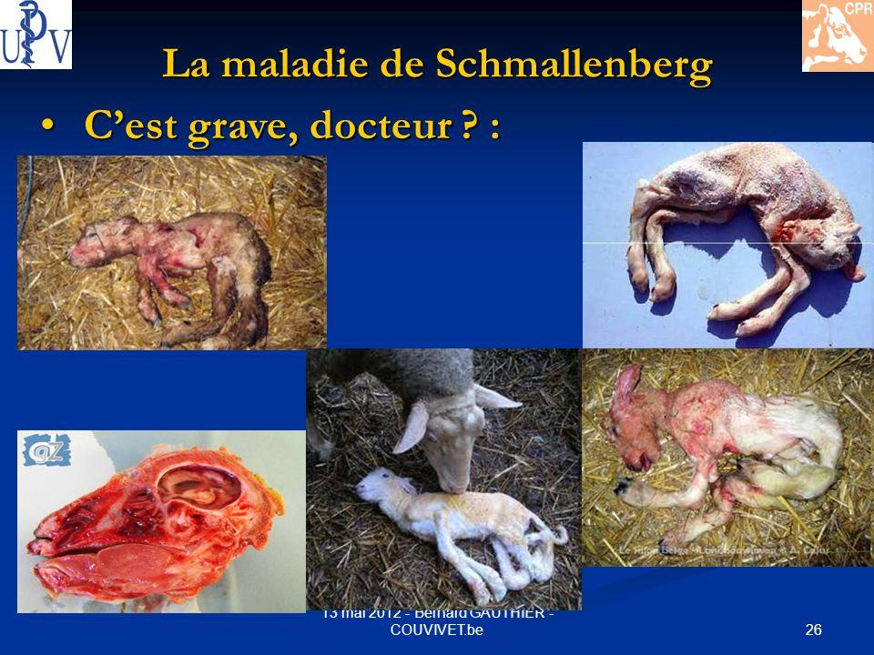 26 13 mai 2012 - Bernard GAUTHIER - COUVIVET.be La maladie de Schmallenberg Cest grave, docteur ? : Cest grave, docteur ? :