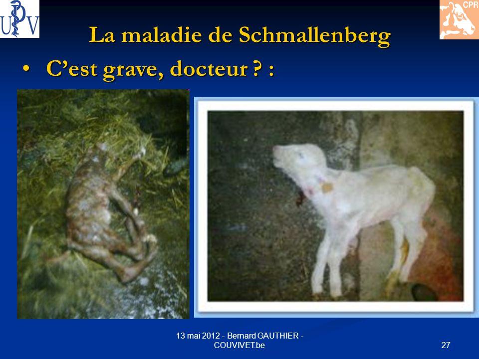 27 13 mai 2012 - Bernard GAUTHIER - COUVIVET.be La maladie de Schmallenberg Cest grave, docteur ? : Cest grave, docteur ? :