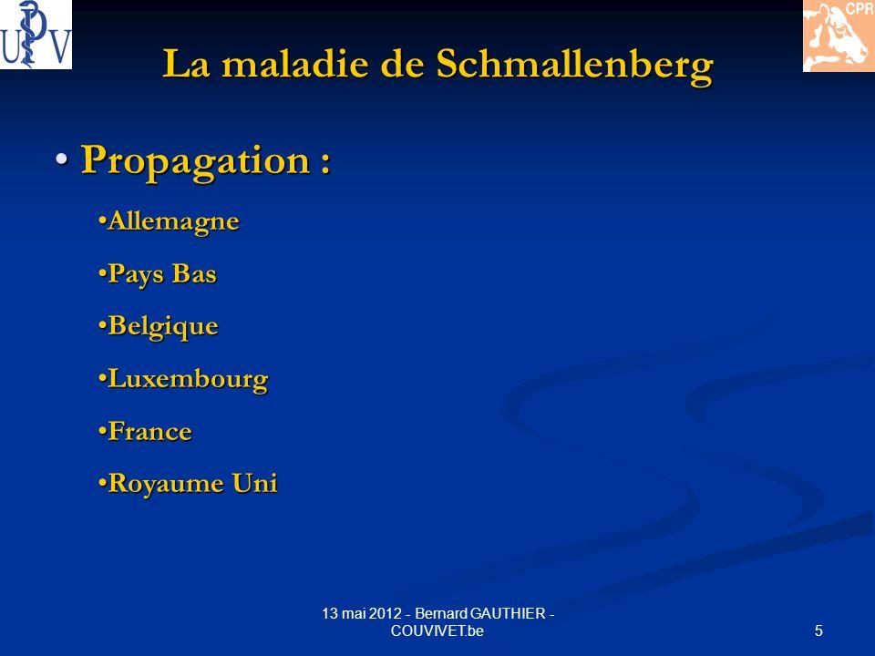 16 13 mai 2012 - Bernard GAUTHIER - COUVIVET.be La maladie de Schmallenberg Le VIRUS : Le VIRUS : Virus SCHMALLENBERG = 3 segments dARN (support génétique) 1.70 % similarité Virus AKABANE ( ruminants Asie- Australie) 2.48 %Virus AINO (idem) 3.96 % Virus SHAMONDA ( Nigéria – Japon) REASSORTIMENT possible !