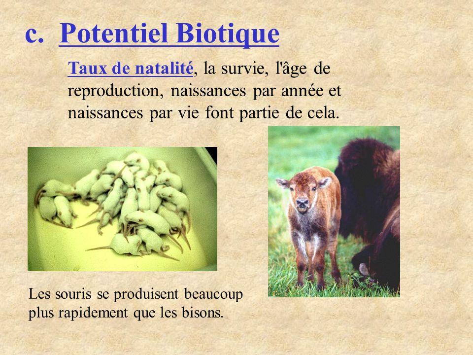 c. Potentiel Biotique Les souris se produisent beaucoup plus rapidement que les bisons. Taux de natalité, la survie, l'âge de reproduction, naissances