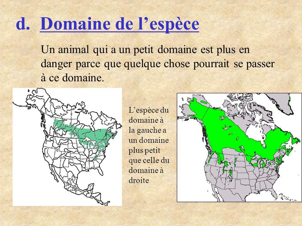 d. Domaine de lespèce Un animal qui a un petit domaine est plus en danger parce que quelque chose pourrait se passer à ce domaine. Lespèce du domaine