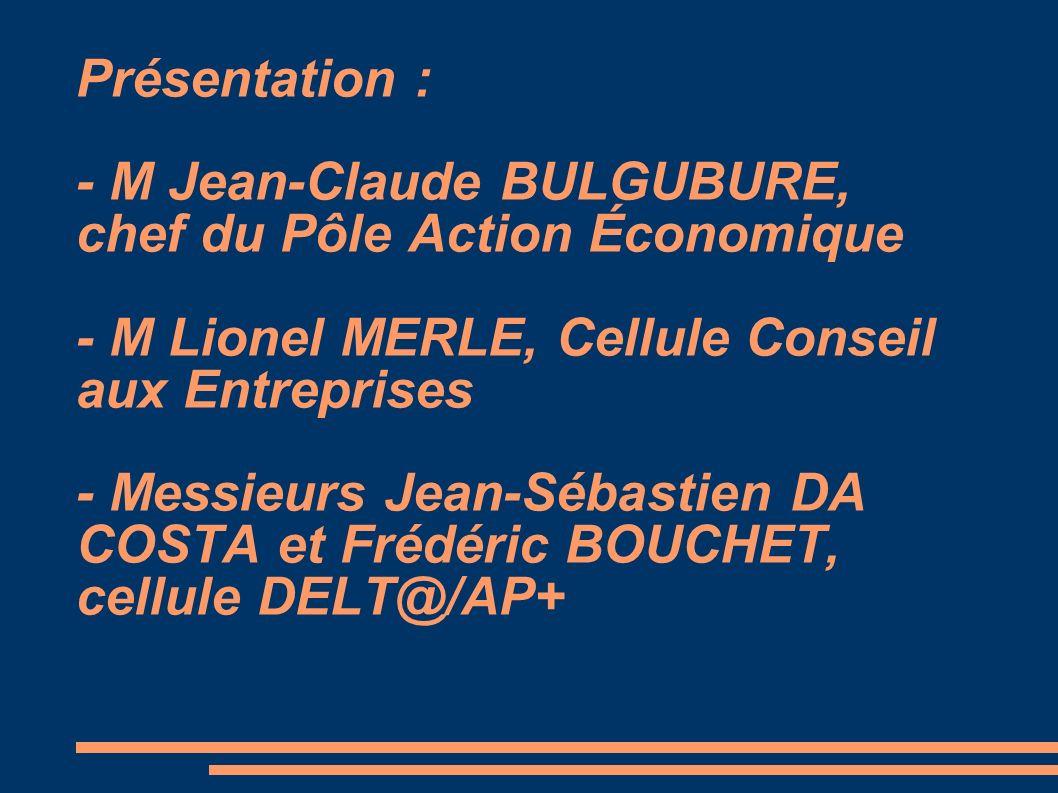 Présentation : - M Jean-Claude BULGUBURE, chef du Pôle Action Économique - M Lionel MERLE, Cellule Conseil aux Entreprises - Messieurs Jean-Sébastien