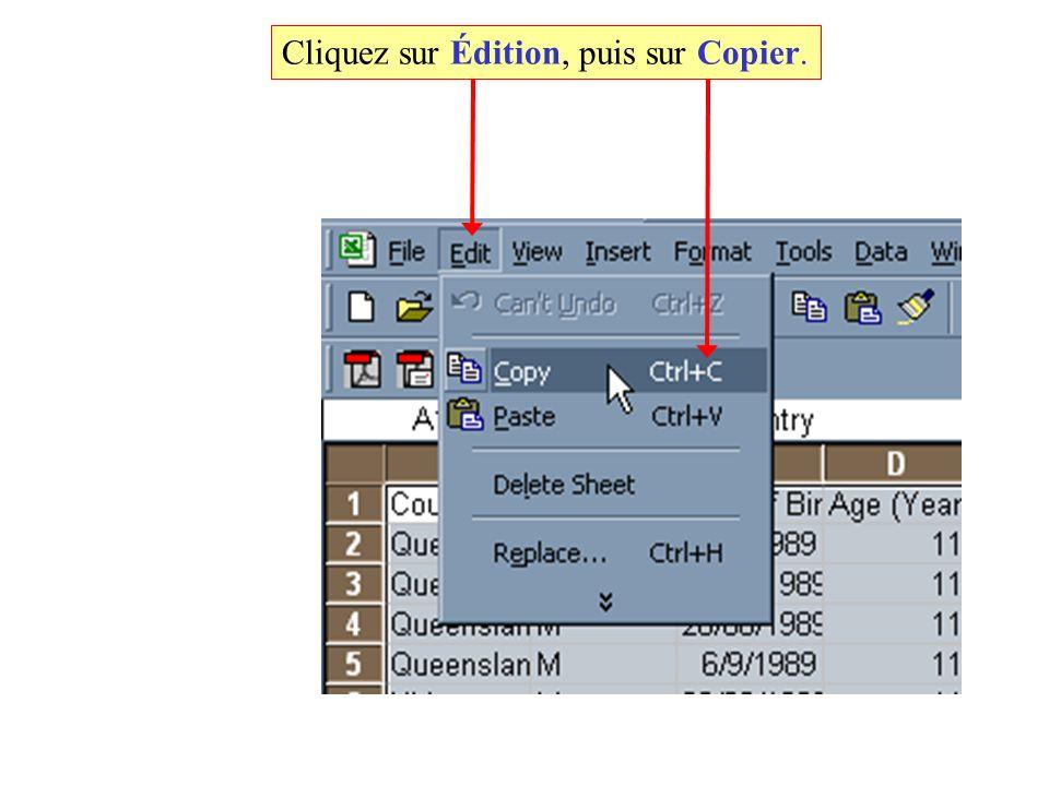 Cliquez sur Édition, puis sur Copier.
