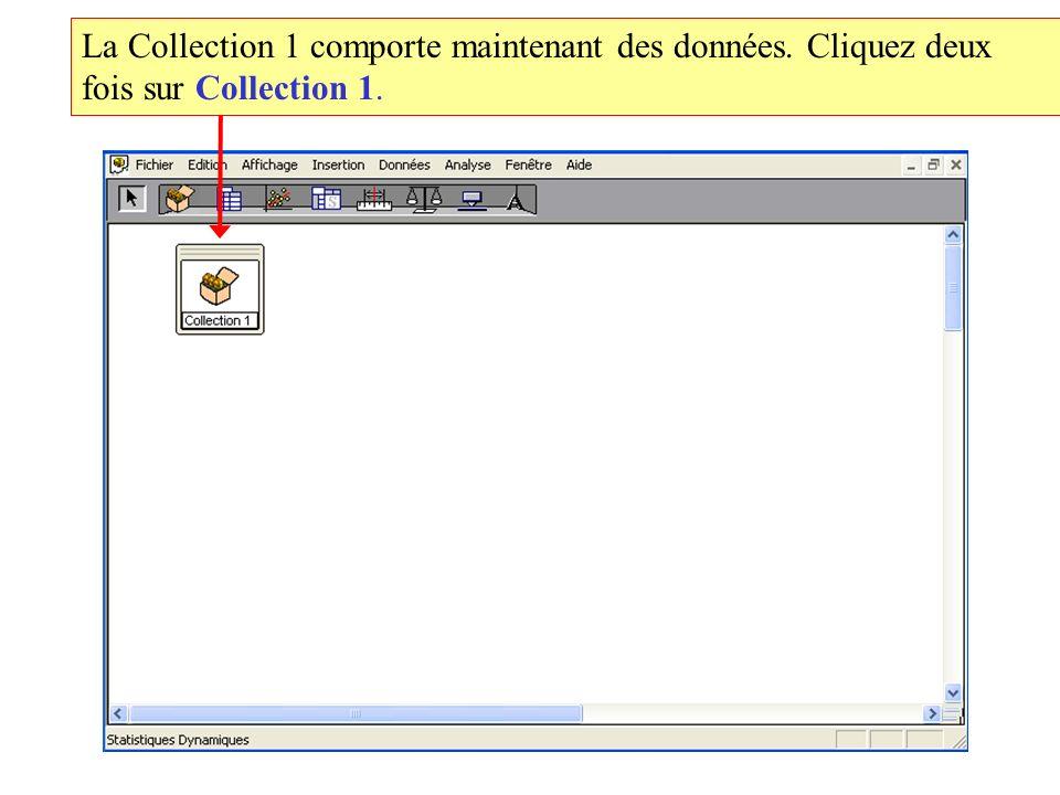 La Collection 1 comporte maintenant des données. Cliquez deux fois sur Collection 1.