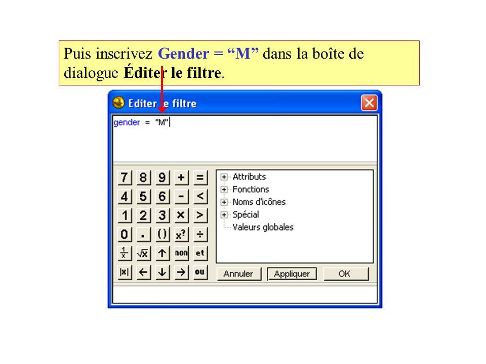 Puis inscrivez Gender = M dans la boîte de dialogue Éditer le filtre.