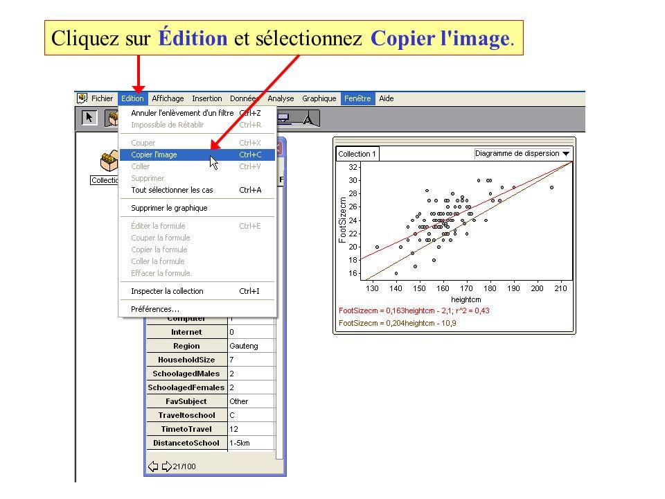 Cliquez sur Édition et sélectionnez Copier l image.