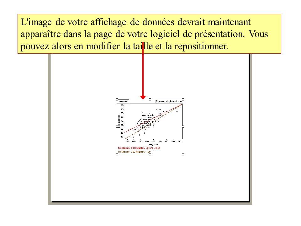 L image de votre affichage de données devrait maintenant apparaître dans la page de votre logiciel de présentation.