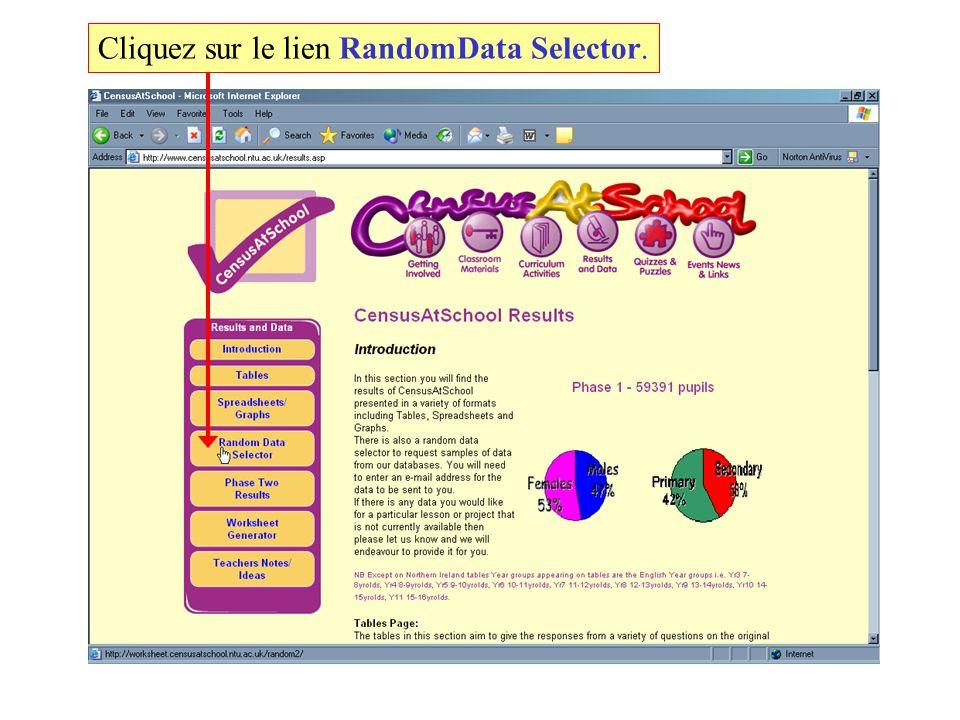 Cliquez sur le lien RandomData Selector.