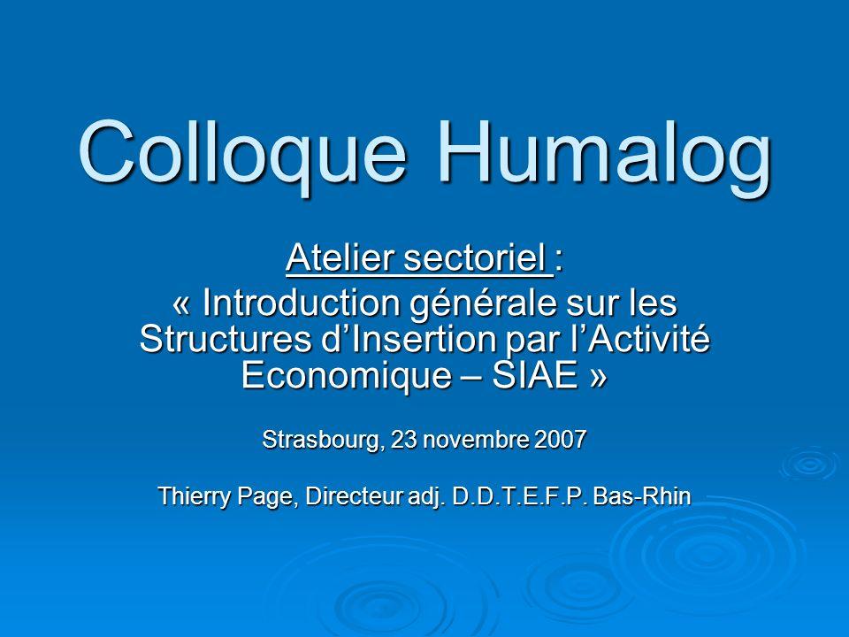 Colloque Humalog Atelier sectoriel : « Introduction générale sur les Structures dInsertion par lActivité Economique – SIAE » Strasbourg, 23 novembre 2007 Thierry Page, Directeur adj.