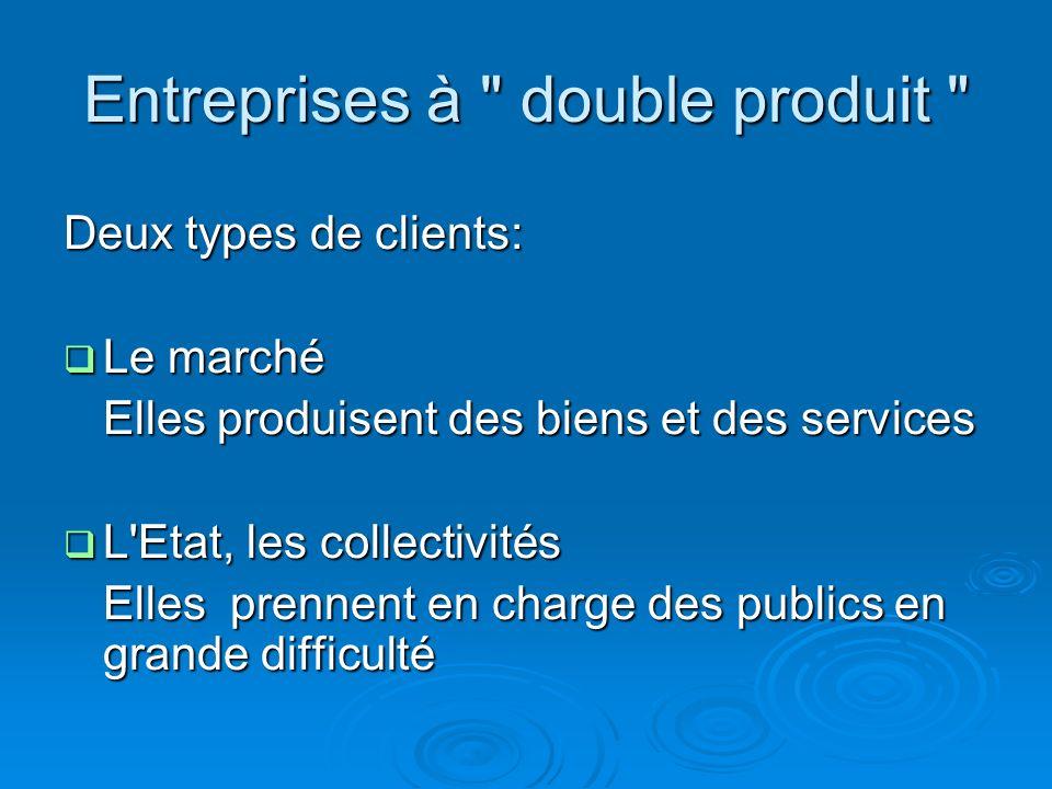 Entreprises à double produit Deux types de clients: Le marché Le marché Elles produisent des biens et des services L Etat, les collectivités L Etat, les collectivités Elles prennent en charge des publics en grande difficulté