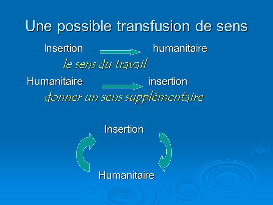 Une possible transfusion de sens Insertion humanitaire le sens du travail le sens du travail Humanitaire insertion donner un sens supplémentaire Inser