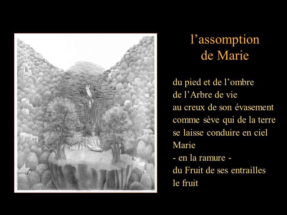 lassomption de Marie du pied et de lombre de lArbre de vie au creux de son évasement comme sève qui de la terre se laisse conduire en ciel Marie - en la ramure - du Fruit de ses entrailles le fruit