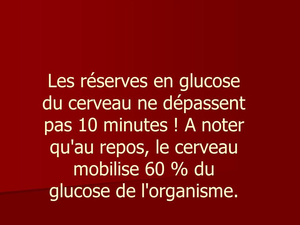Les réserves en glucose du cerveau ne dépassent pas 10 minutes .