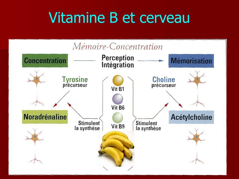 Vitamine B et cerveau
