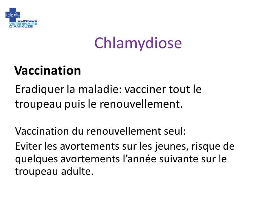 Chlamydiose Vaccination du renouvellement seul: Eviter les avortements sur les jeunes, risque de quelques avortements lannée suivante sur le troupeau