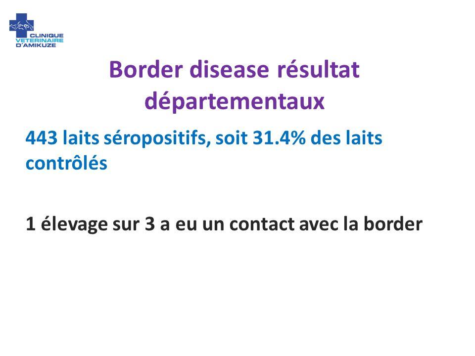 Border disease résultat départementaux 443 laits séropositifs, soit 31.4% des laits contrôlés 1 élevage sur 3 a eu un contact avec la border