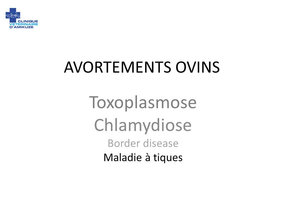 AVORTEMENTS OVINS Toxoplasmose Chlamydiose Border disease Maladie à tiques