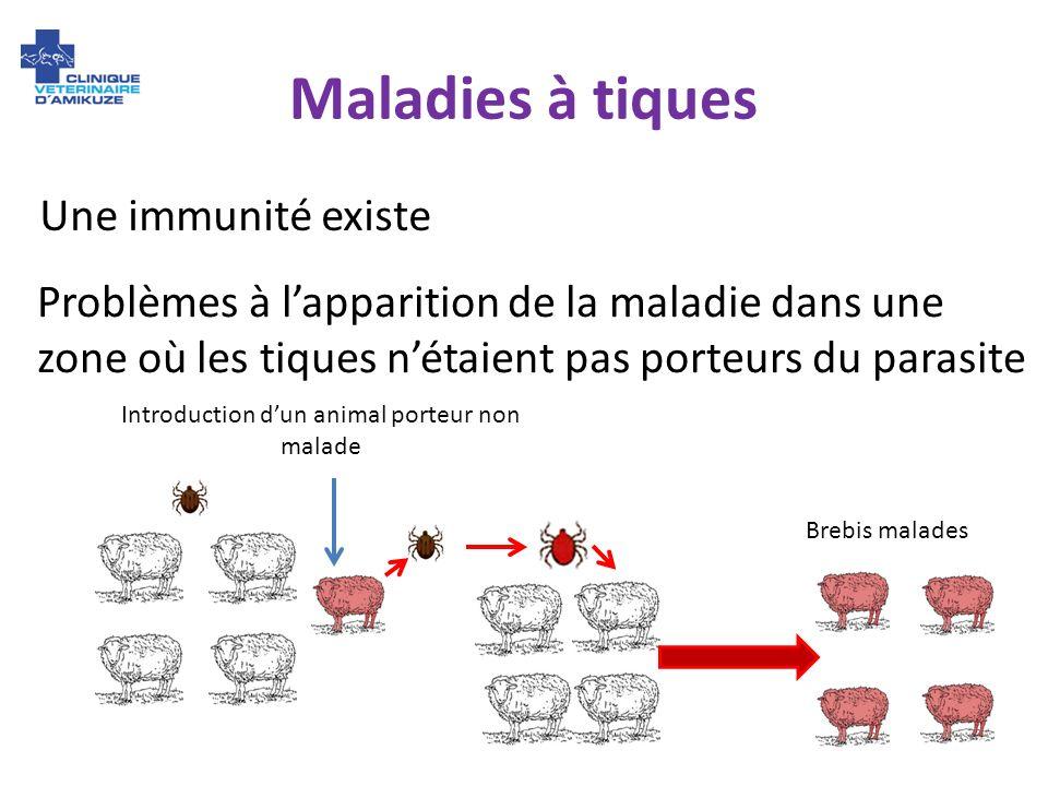 Maladies à tiques Une immunité existe Problèmes à lapparition de la maladie dans une zone où les tiques nétaient pas porteurs du parasite Introduction