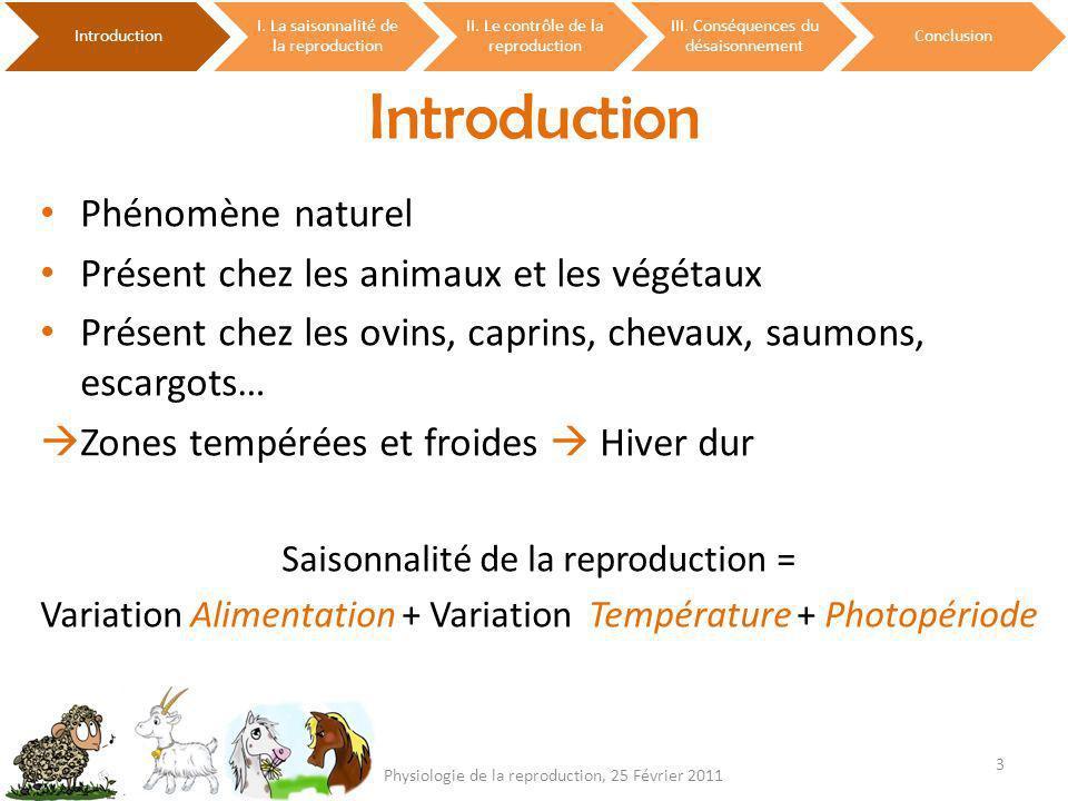 Introduction I. La saisonnalité de la reproduction II. Le contrôle de la reproduction III. Conséquences du désaisonnement Conclusion 3 Physiologie de
