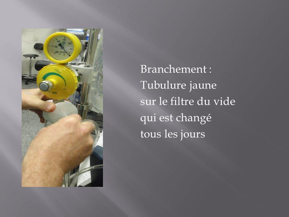 Branchement : Tubulure jaune sur le filtre du vide qui est changé tous les jours