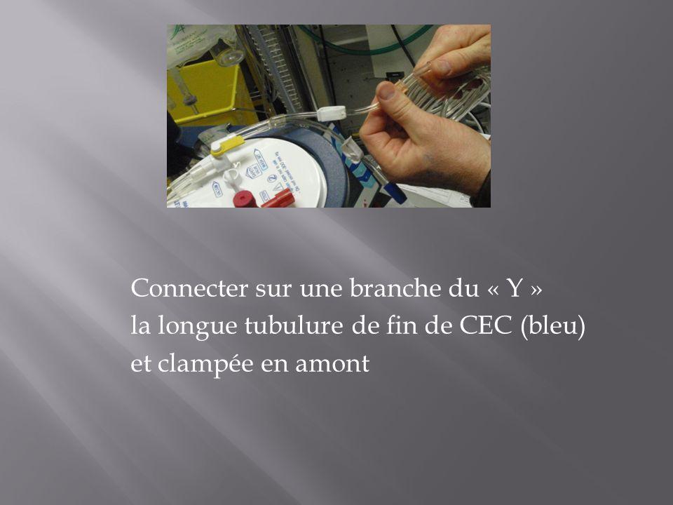 Connecter sur une branche du « Y » la longue tubulure de fin de CEC (bleu) et clampée en amont