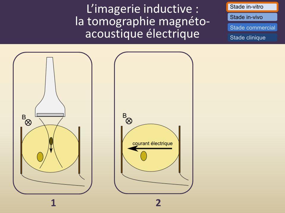 Limagerie inductive : la tomographie magnéto- acoustique électrique 12