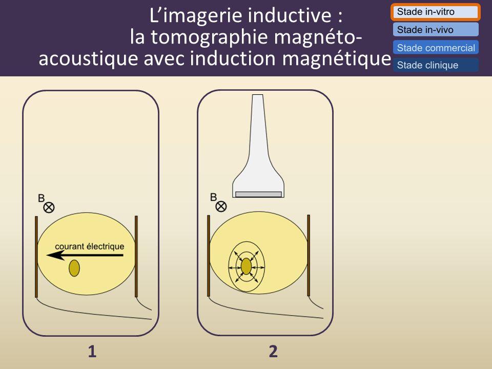 Limagerie inductive : la tomographie magnéto- acoustique avec induction magnétique. 12
