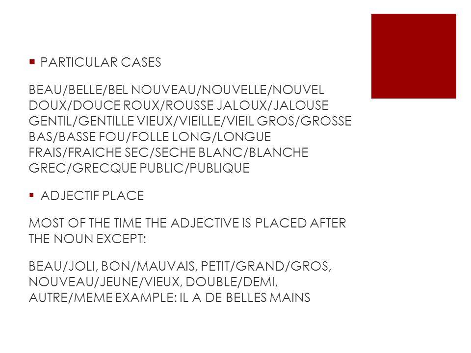 PARTICULAR CASES BEAU/BELLE/BEL NOUVEAU/NOUVELLE/NOUVEL DOUX/DOUCE ROUX/ROUSSE JALOUX/JALOUSE GENTIL/GENTILLE VIEUX/VIEILLE/VIEIL GROS/GROSSE BAS/BASS