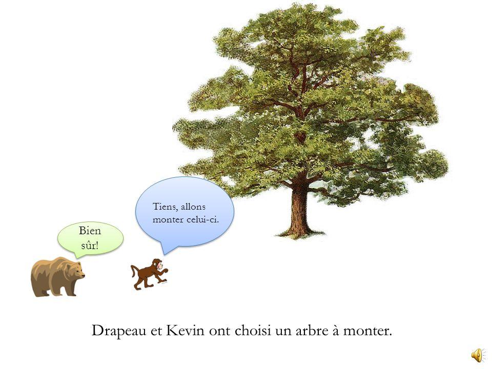 Drapeau et Kevin ont décidé daller au parc monter les arbres. PARC