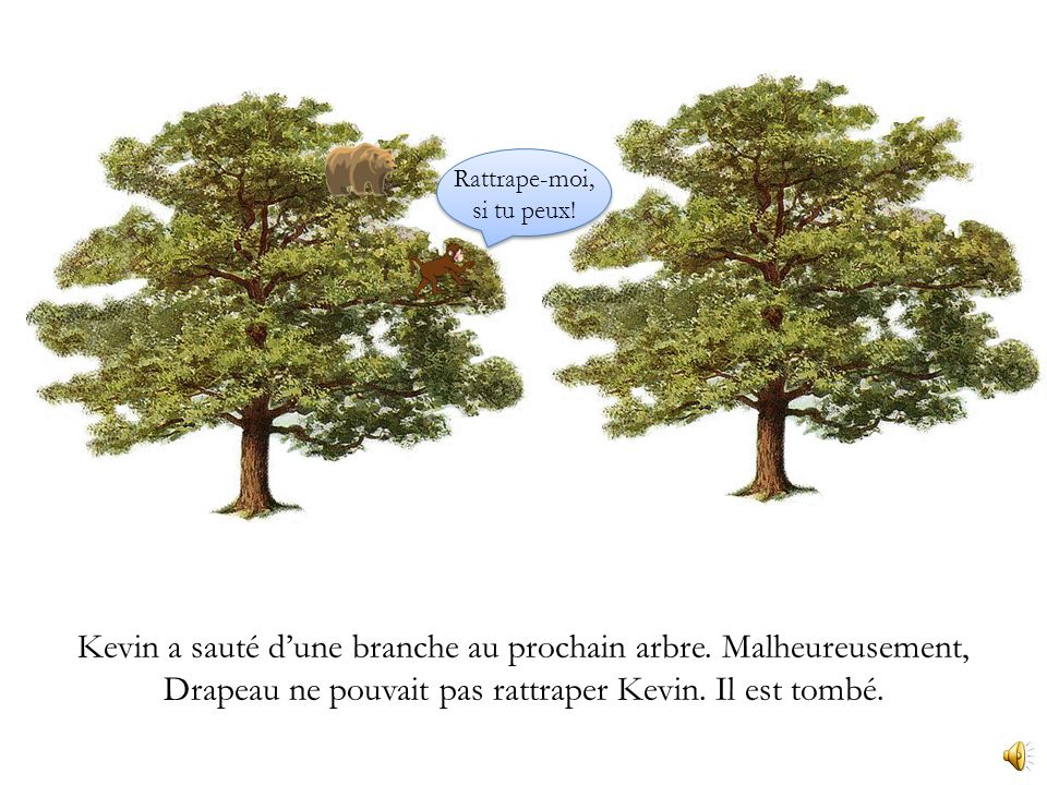 Ils ont monté des arbres depuis quelque temps. Drapeau a suivi Kevin de larbre a larbre.