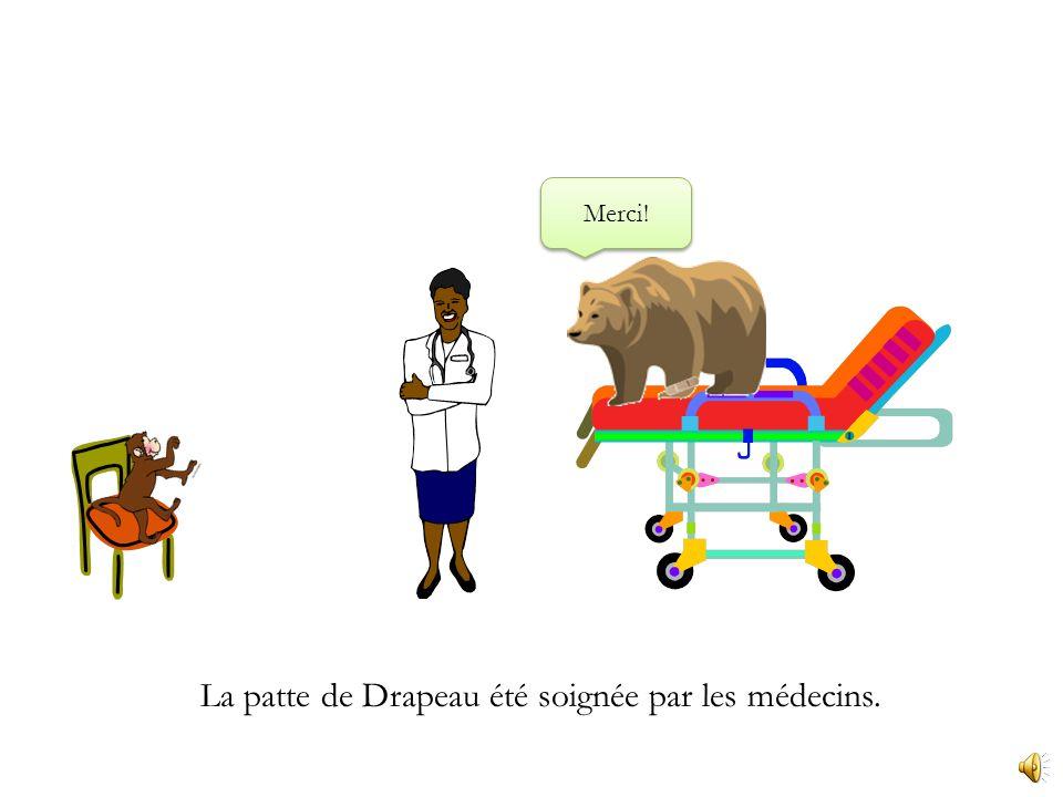 La patte de Drapeau a beaucoup grossi. Ugh! Allons á lhôpital.