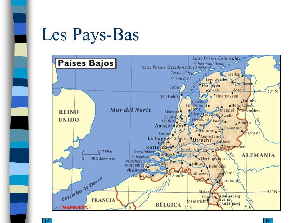 Aire: 540.840 km2 Capitale: Amsterdam Population:16.150.000 habitants Indice de fécondité: 1,54 Espérance de vie: 78 ans Langue officielle: néerlandais Régime: monarchie constitutionnelle Monnaie: Florin PIB: 0,93 PNB: 396.9 milliards/dollars