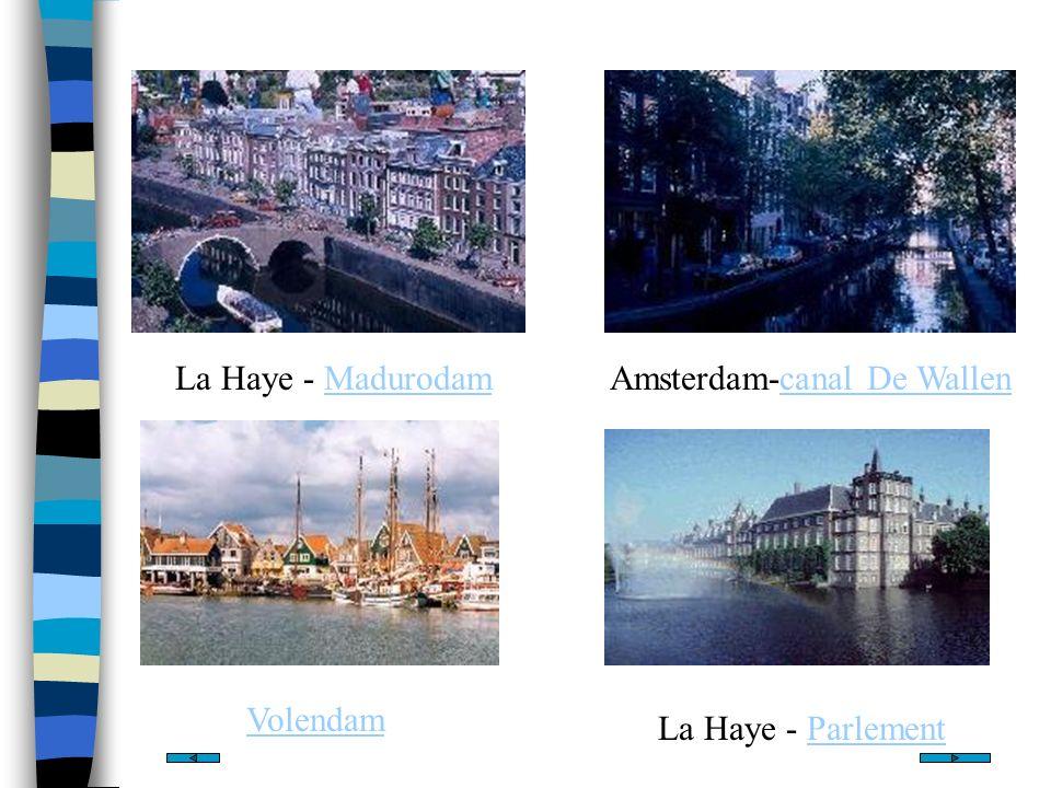Le Palais Royal Le Palais Royal se trouve à La Haye, ainsi que le siège du gouvernement et la plus part des ambassades Chef dEtat: la reine Beatrix Premier ministre: Jan Peter Balkende