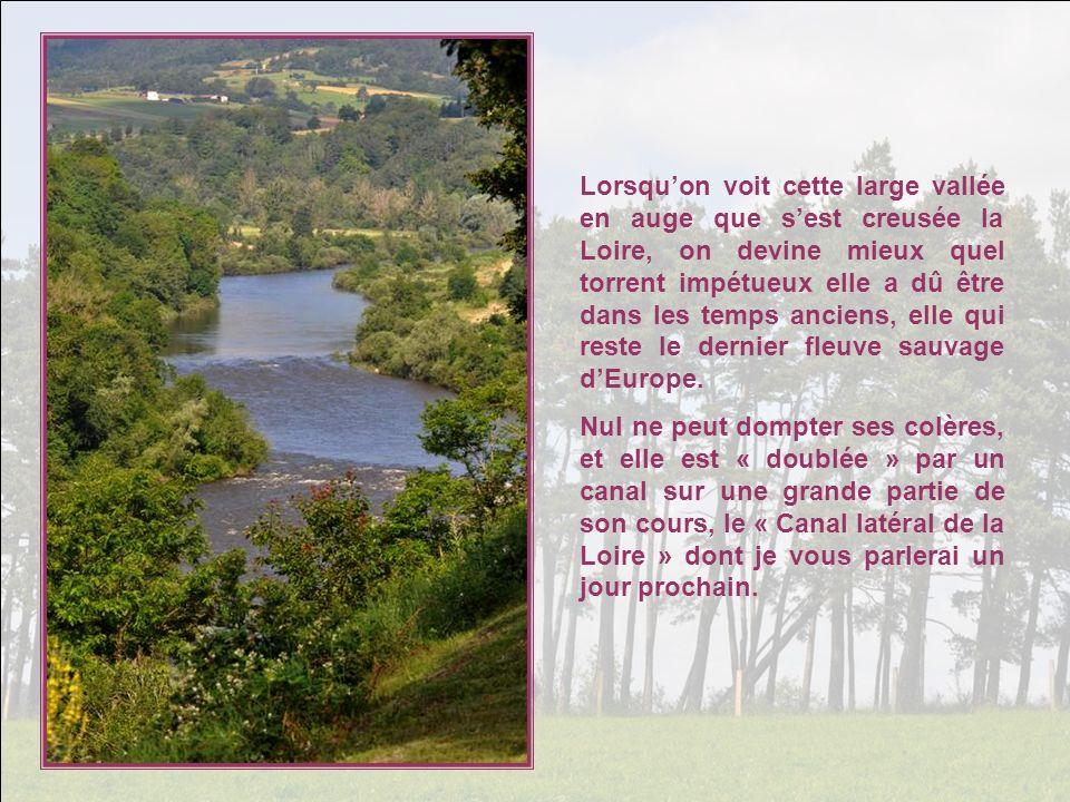Lorsquon voit cette large vallée en auge que sest creusée la Loire, on devine mieux quel torrent impétueux elle a dû être dans les temps anciens, elle qui reste le dernier fleuve sauvage dEurope.
