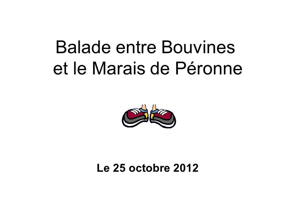 Balade entre Bouvines et le Marais de Péronne Le 25 octobre 2012