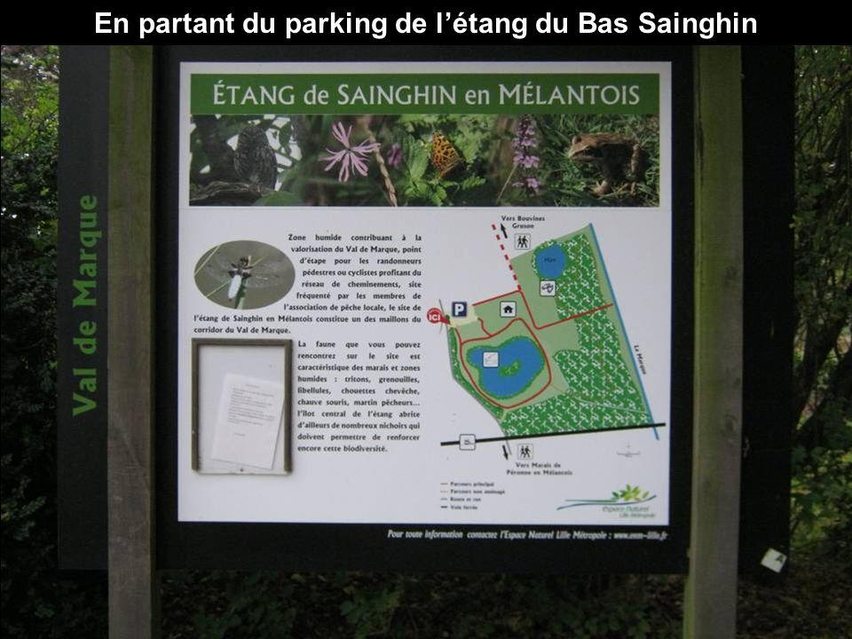 En partant du parking de létang du Bas Sainghin