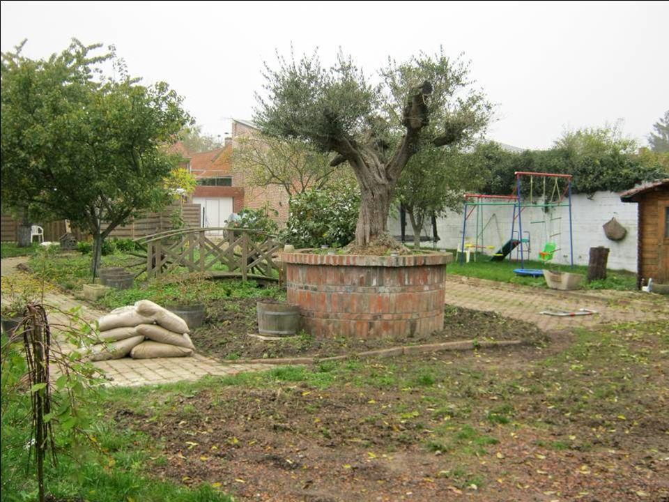 Cest ici, à la Fontaine Saint Pierre, que Philippe Auguste est venu boire un coup le 24.07.1214 avant la bataille de Bouvines
