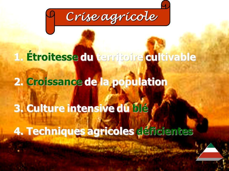 EDU-7492, David Milot, octobre 2001 Crise agricole Crise agricole 1. Étroitesse du territoire cultivable 2. Croissance de la population 3. Culture int
