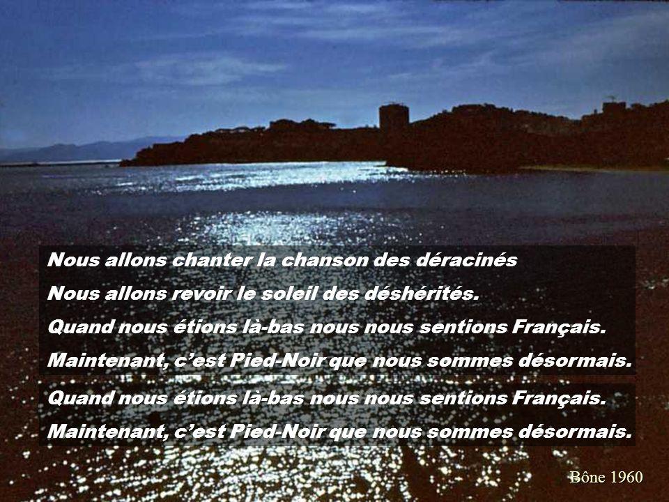 Dessin : Alain LOUSTEAU