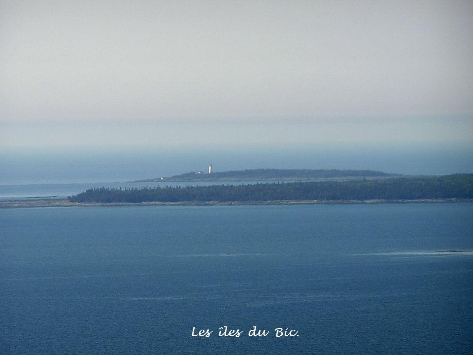 Les îles du Bic.
