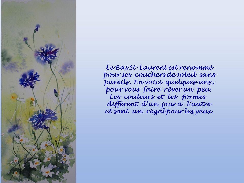 Le Bas St-Laurent est renommé pour ses couchers de soleil sans pareils. En voici quelques-uns, pour vous faire rêver un peu. Les couleurs et les forme