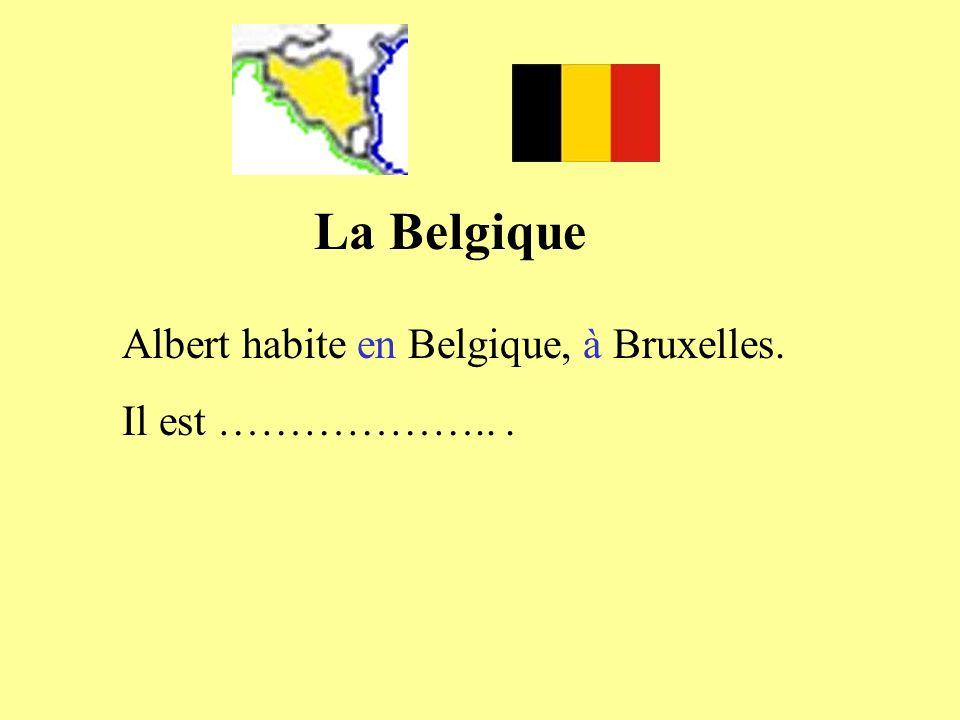 Albert habite en Belgique, à Bruxelles. Il est ………………...