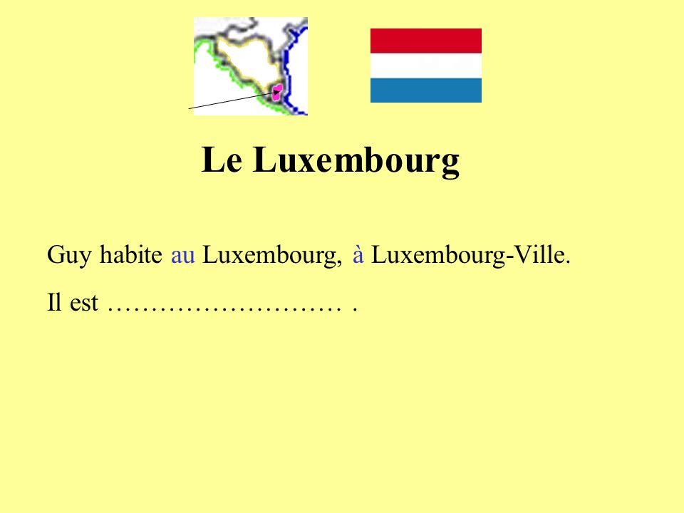 Guy habite au Luxembourg, à Luxembourg-Ville. Il est ……………………….
