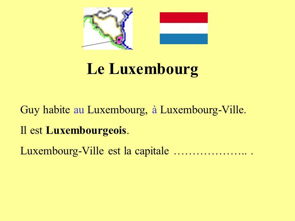 Le Luxembourg Guy habite au Luxembourg, à Luxembourg-Ville. Il est Luxembourgeois. Luxembourg-Ville est la capitale ………………...