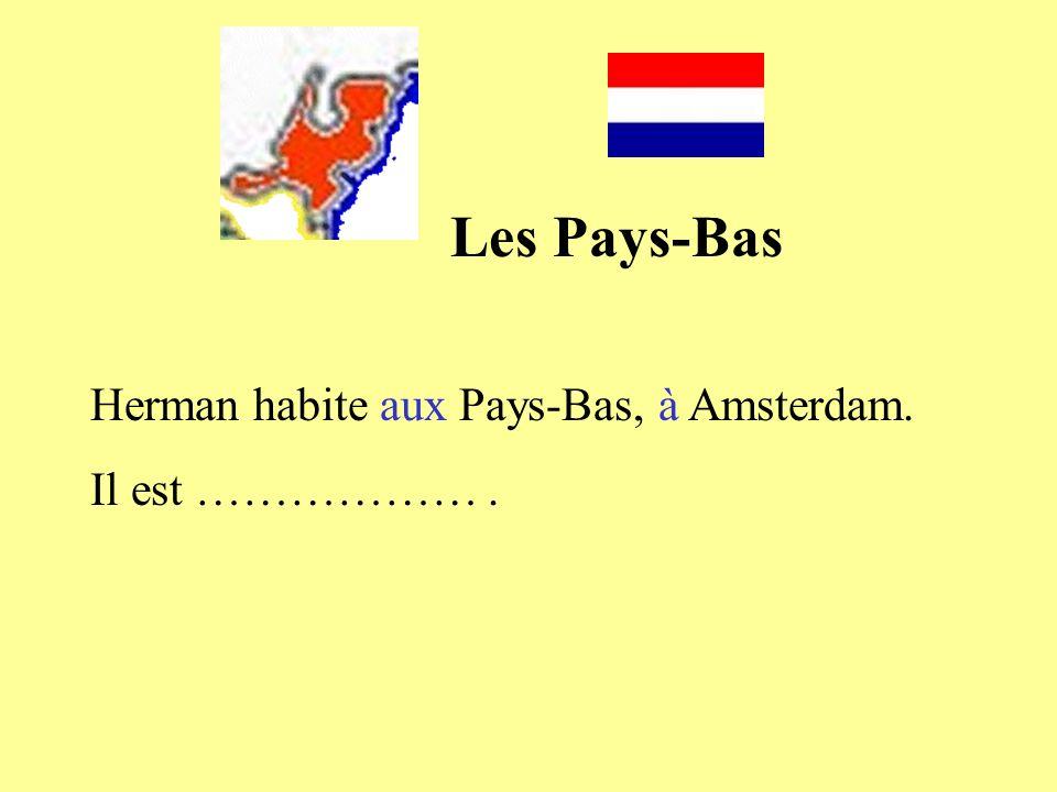 Herman habite aux Pays-Bas, à Amsterdam. Il est ……………….